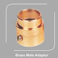 Brass Male Adaptor